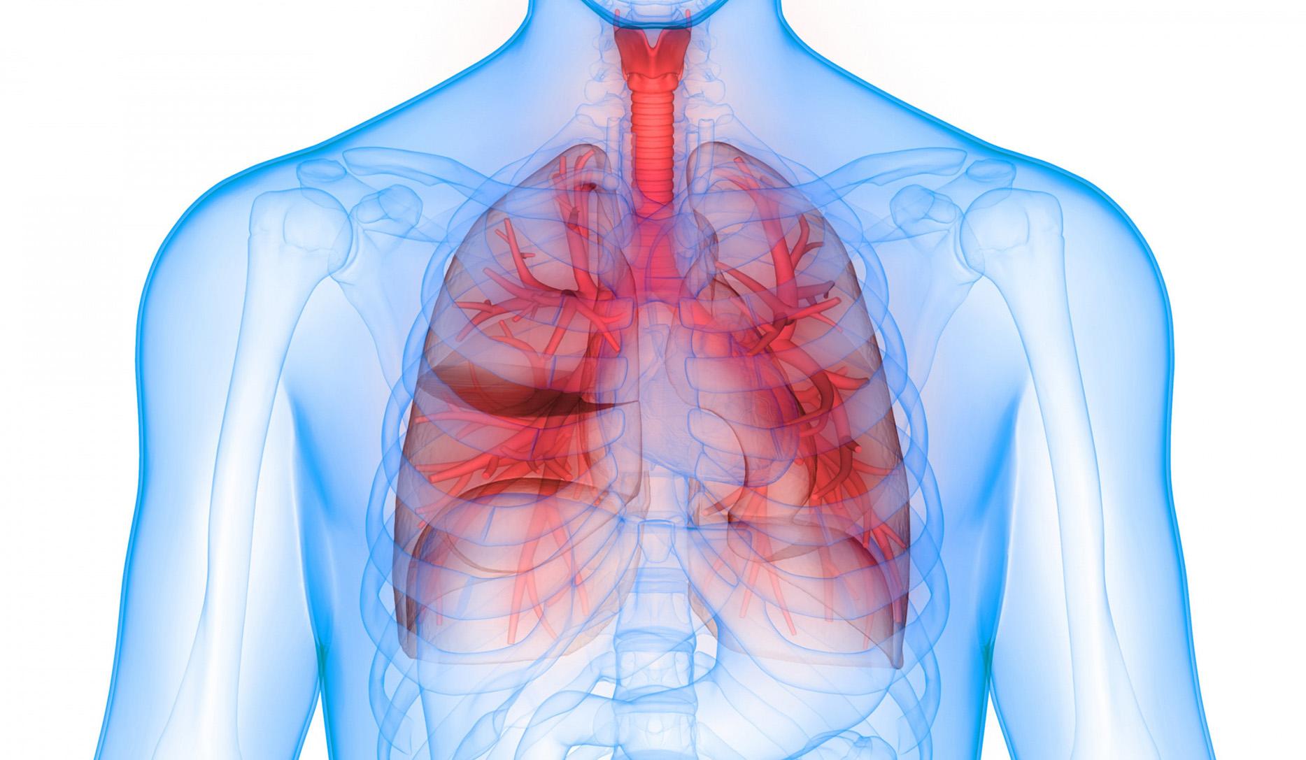 Ziua Mondială a Pneumoniei