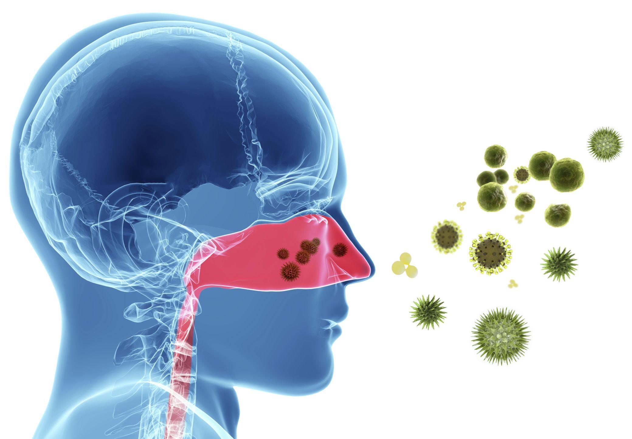 Alergiile sezoniere în contextul pandemiei COVID-19